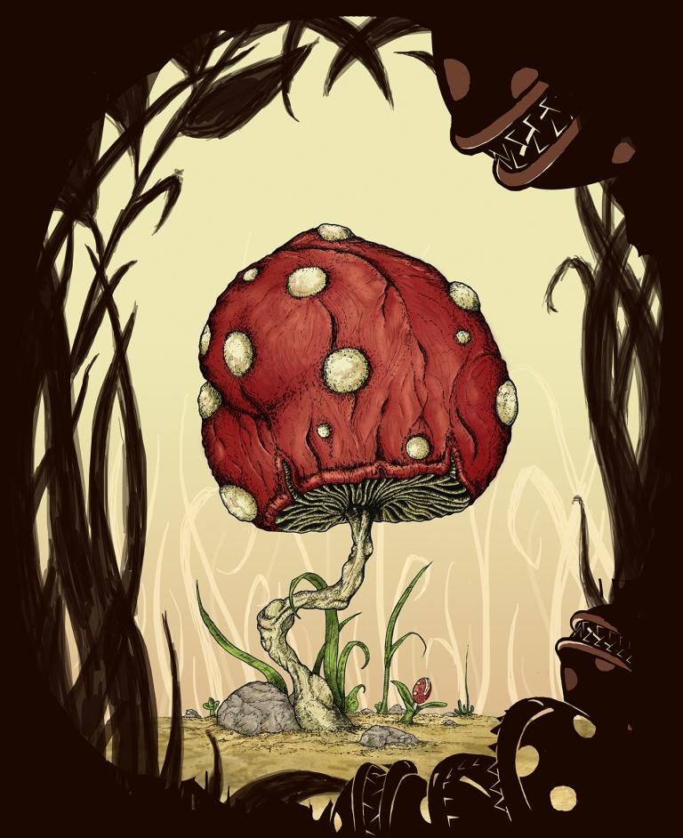 Grow Mushroom Color Process 6